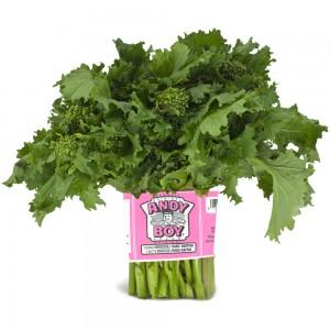 rappini-broccoli-rabe-andy-boy