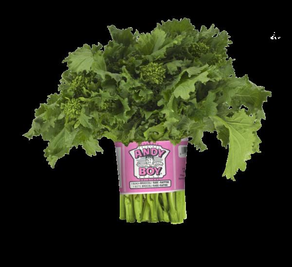 brocoli-rave darrigo