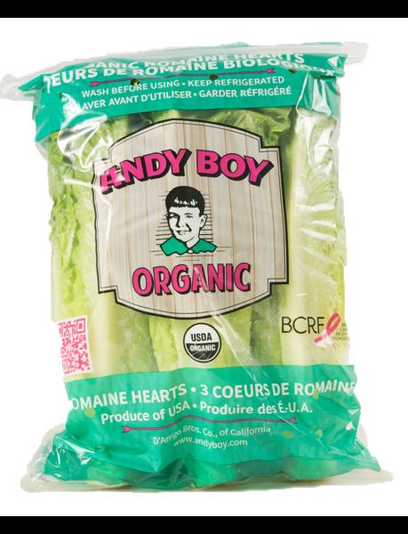 andy-boy-organic-heart-12-3