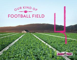 andyboy-superbowl-broccoli-rabe-field