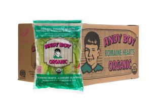 andy-boy-romaine-hearts-organic