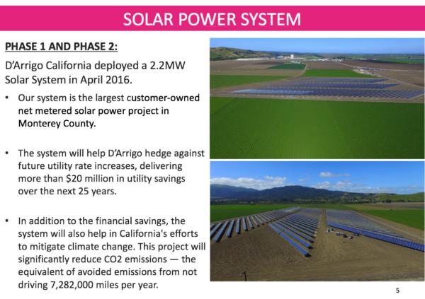 énergie-solaire-chez-D'Arrigo-bros