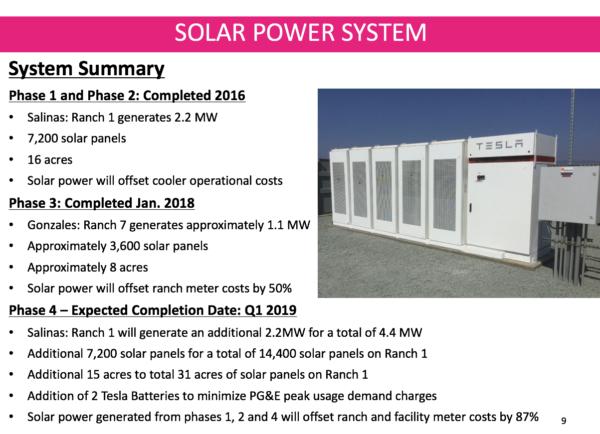 darrigo-bros-tesla-solar-battery