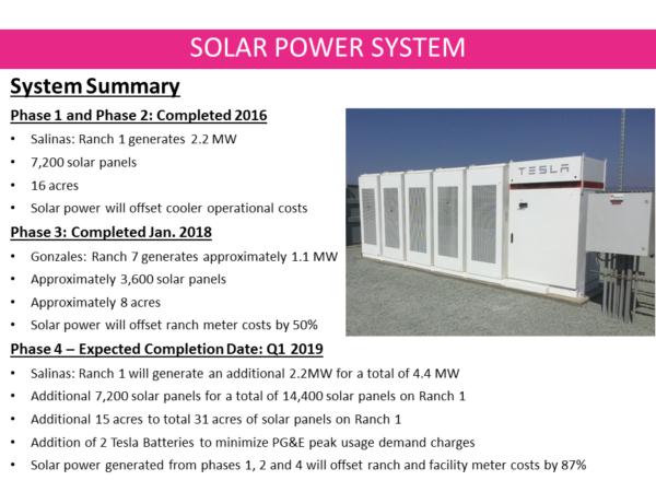 darrigo-solar-power-system-summary